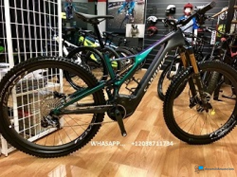 2019 Specialized Men